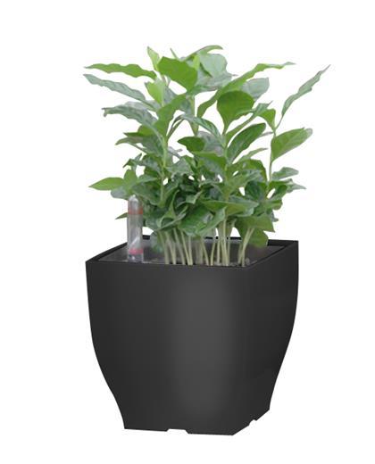 Samozavlažovací kvetináč G21 Cube mini černý 13.5 cm